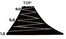 富士山目標2